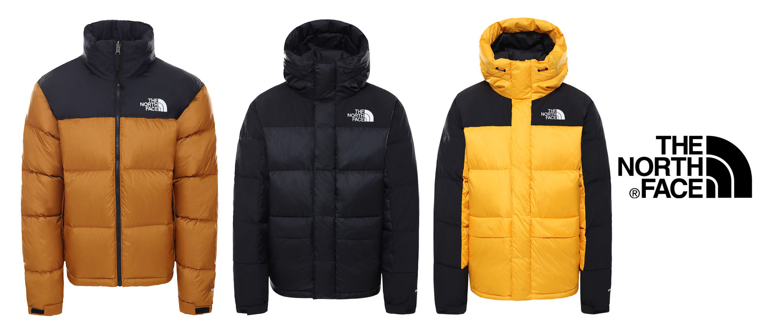 31 THE NORTH FACE