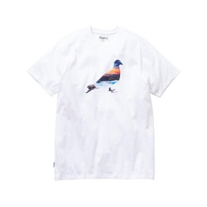 STAPLE TEE SUNSET PIGEON